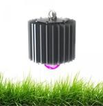 Светодиодный светильник ПРОФИ-50-ФИТО